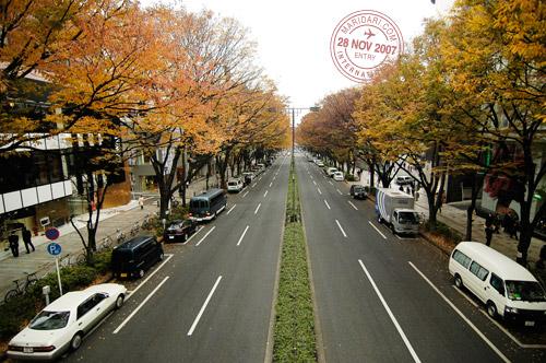 Omotesando Boulevard Luxury Shopping Belt